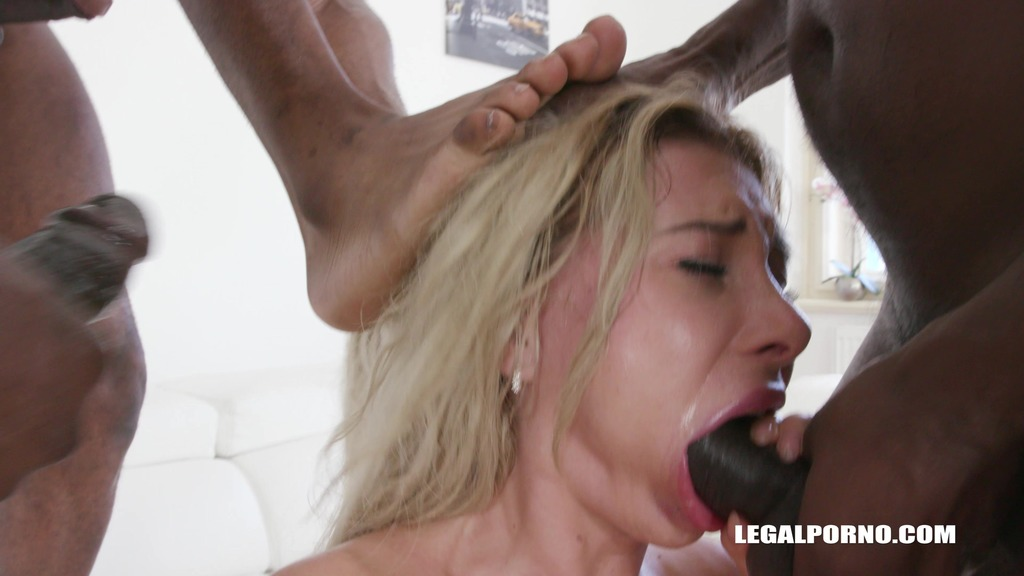 Marilyn Crystal comes to test black bulls DAP IV317